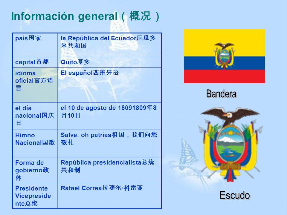 Información general(概况)