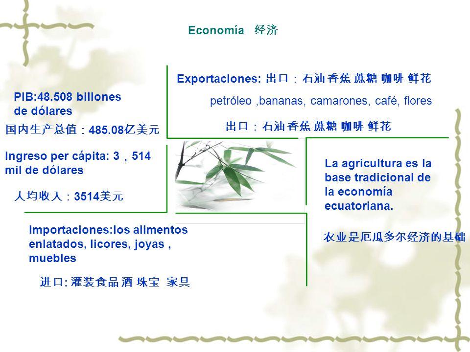 Economía 经济Exportaciones: 出口:石油 香蕉 蔗糖 咖啡 鲜花. PIB:48.508 billones de dólares. petróleo ,bananas, camarones, café, flores.