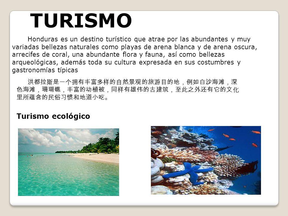 TURISMO Turismo ecológico