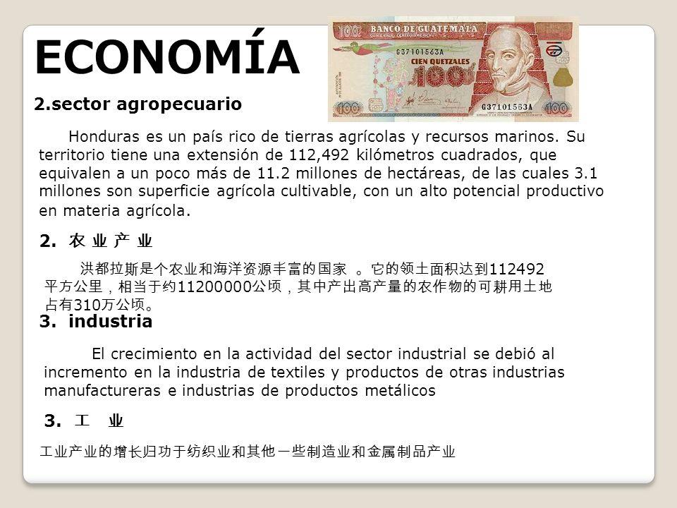 ECONOMÍA 2.sector agropecuario
