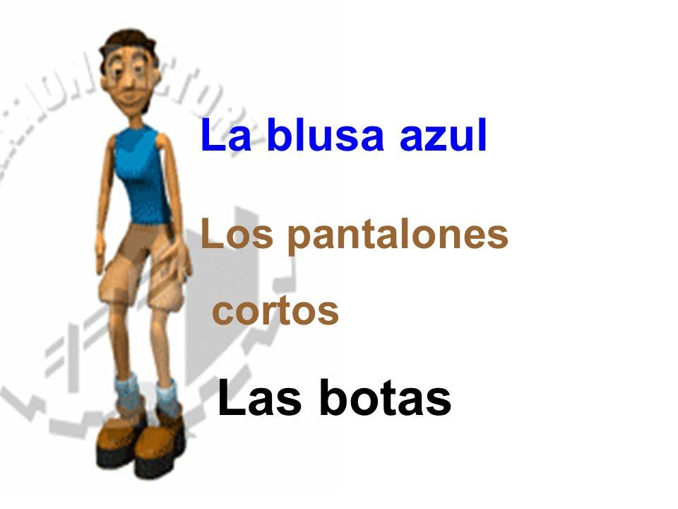 La blusa azul Los pantalones cortos Las botas