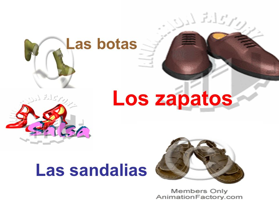 Las botas Los zapatos Las sandalias