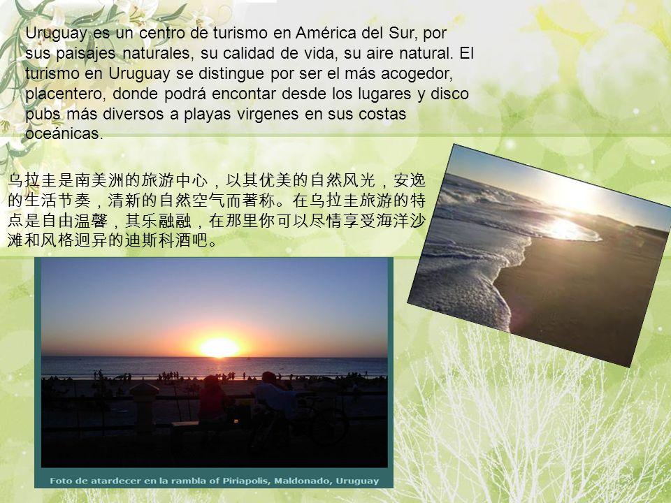 Uruguay es un centro de turismo en América del Sur, por sus paisajes naturales, su calidad de vida, su aire natural. El turismo en Uruguay se distingue por ser el más acogedor, placentero, donde podrá encontar desde los lugares y disco pubs más diversos a playas virgenes en sus costas oceánicas.