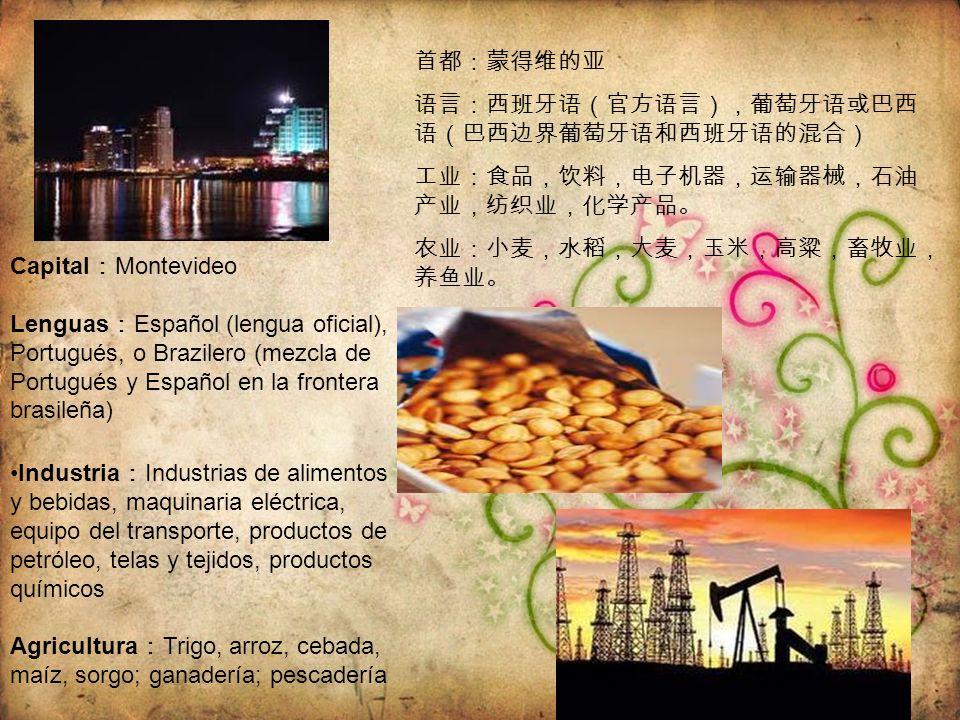 首都:蒙得维的亚 语言:西班牙语(官方语言),葡萄牙语或巴西语(巴西边界葡萄牙语和西班牙语的混合) 工业:食品,饮料,电子机器,运输器械,石油产业,纺织业,化学产品。 农业:小麦,水稻,大麦,玉米,高粱,畜牧业,养鱼业。