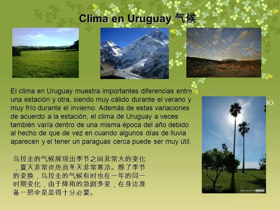 Clima en Uruguay 气候