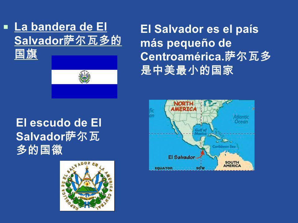 La bandera de El Salvador萨尔瓦多的国旗