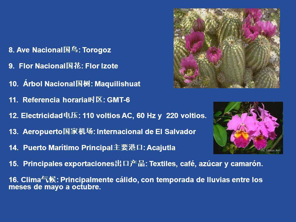 8. Ave Nacional国鸟: Torogoz