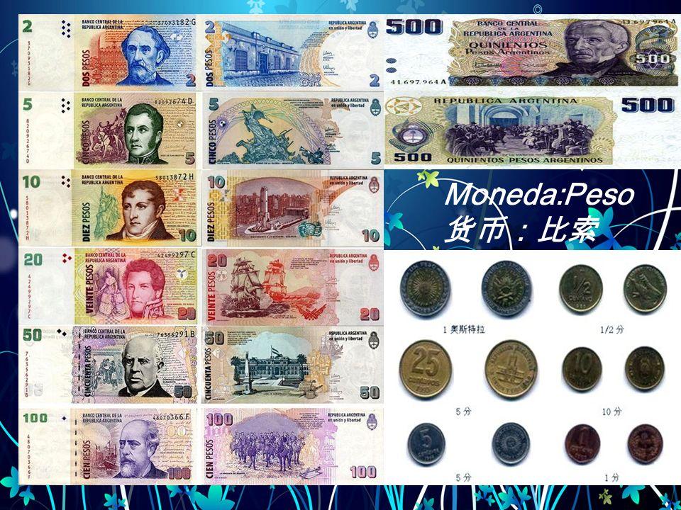 Moneda:Peso 货币:比索