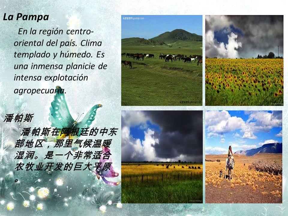 La Pampa En la región centro-oriental del país. Clima templado y húmedo. Es una inmensa planicie de intensa explotación agropecuaria.
