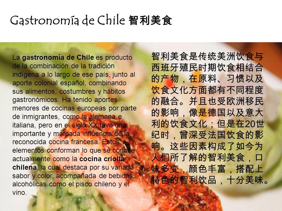 Gastronomía de Chile 智利美食