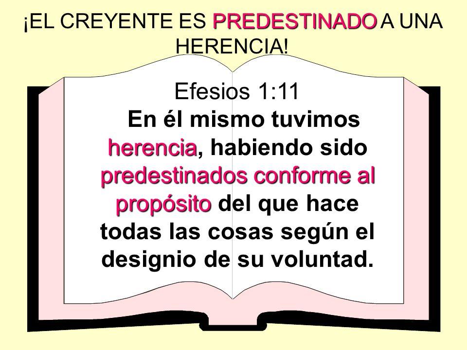 ¡EL CREYENTE ES PREDESTINADO A UNA HERENCIA!