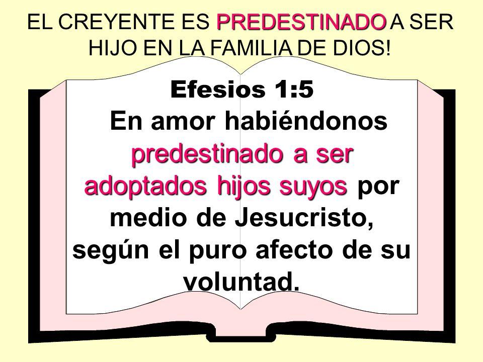 EL CREYENTE ES PREDESTINADO A SER HIJO EN LA FAMILIA DE DIOS!