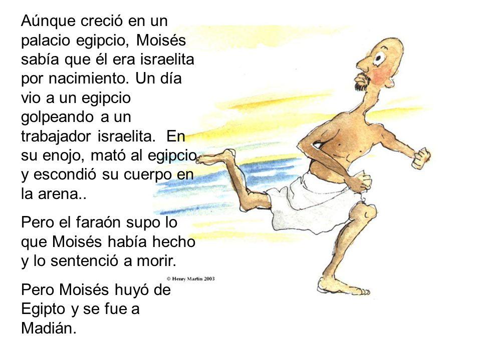Aúnque creció en un palacio egipcio, Moisés sabía que él era israelita por nacimiento. Un día vio a un egipcio golpeando a un trabajador israelita. En su enojo, mató al egipcio y escondió su cuerpo en la arena..