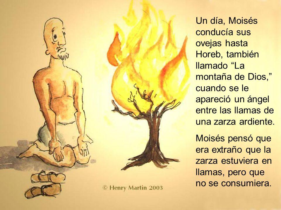 Un día, Moisés conducía sus ovejas hasta Horeb, también llamado La montaña de Dios, cuando se le apareció un ángel entre las llamas de una zarza ardiente.