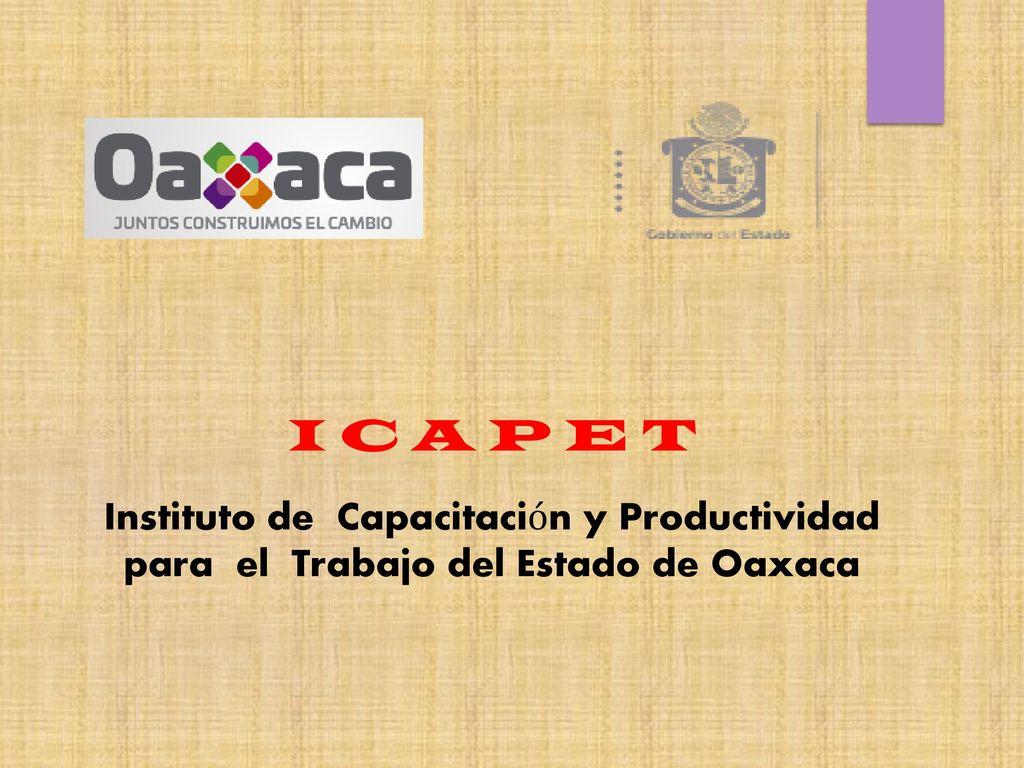 Elaboración de Cartas Descriptivas. - ppt video online descargar