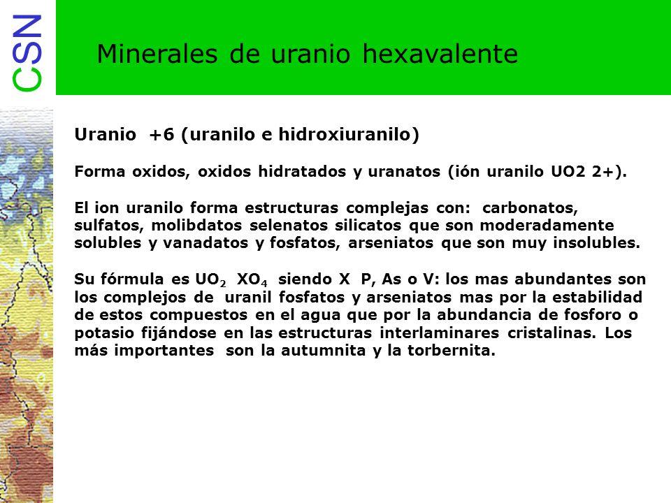Minerales de uranio hexavalente