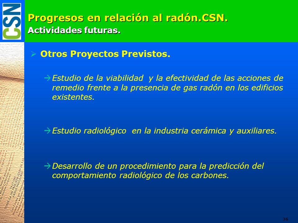 Progresos en relación al radón.CSN. Actividades futuras.