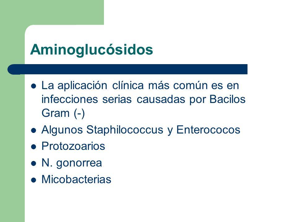Aminoglucósidos La aplicación clínica más común es en infecciones serias causadas por Bacilos Gram (-)