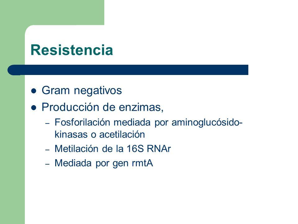 Resistencia Gram negativos Producción de enzimas,