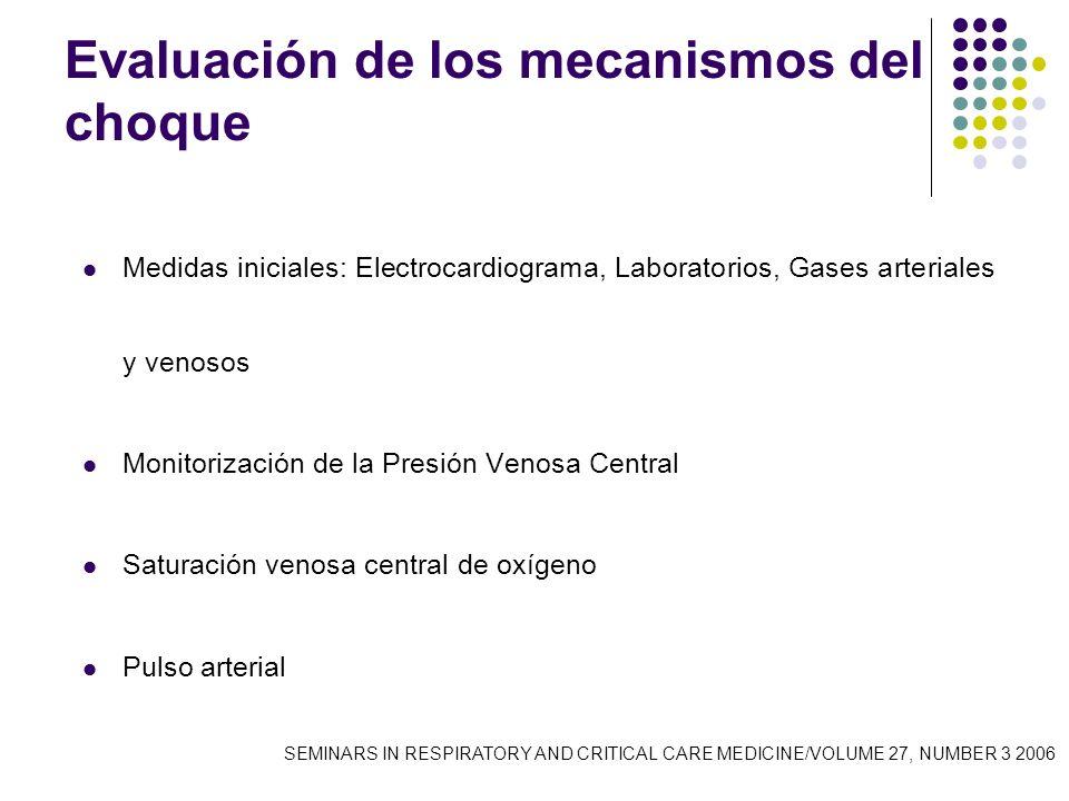 Evaluación de los mecanismos del choque