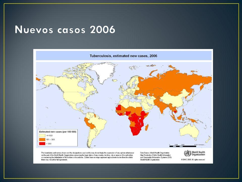 Nuevos casos 2006