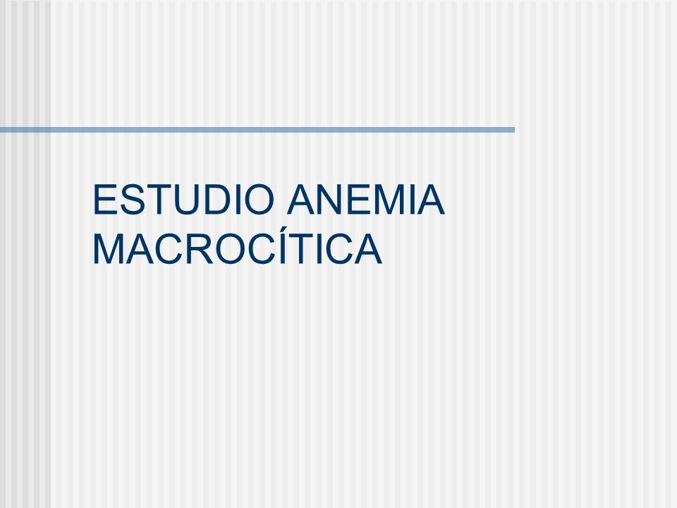ESTUDIO ANEMIA MACROCÍTICA