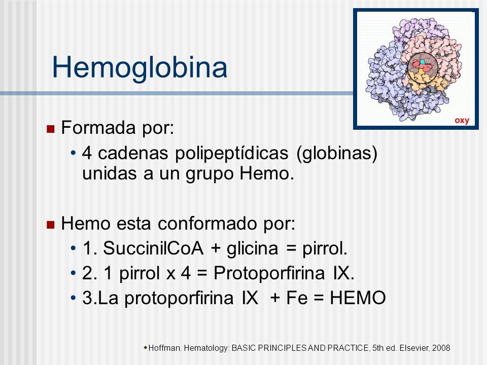 Hemoglobina Formada por: