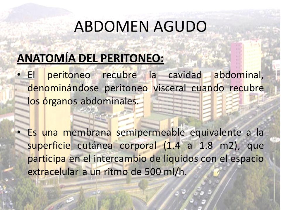 ABDOMEN AGUDO ANATOMÍA DEL PERITONEO: