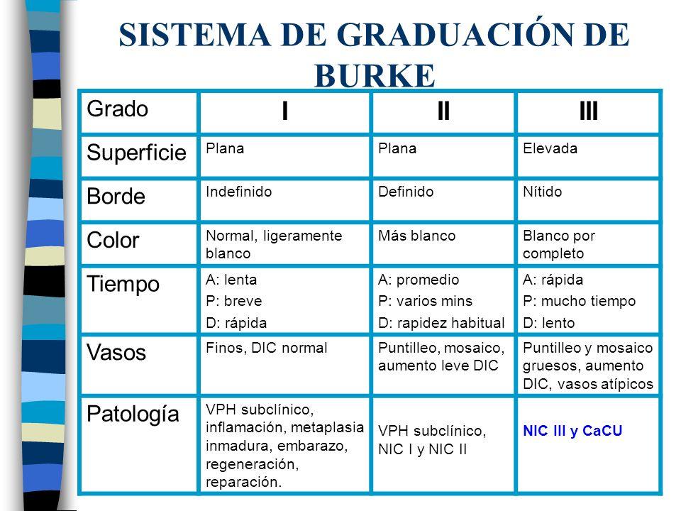 SISTEMA DE GRADUACIÓN DE BURKE