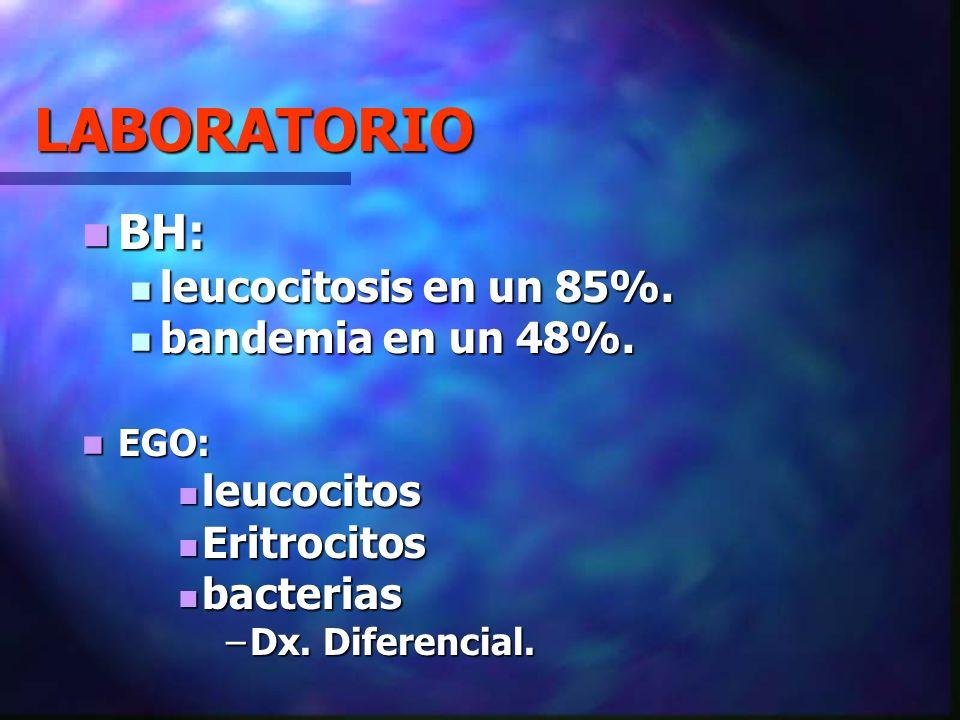 LABORATORIO BH: leucocitosis en un 85%. bandemia en un 48%. leucocitos