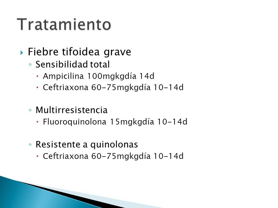 Tratamiento Fiebre tifoidea grave Sensibilidad total Multirresistencia