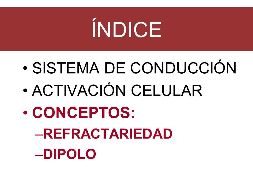 ÍNDICE SISTEMA DE CONDUCCIÓN ACTIVACIÓN CELULAR CONCEPTOS: