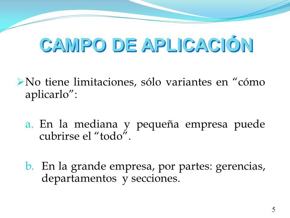 CAMPO DE APLICACIÓN No tiene limitaciones, sólo variantes en cómo aplicarlo : En la mediana y pequeña empresa puede cubrirse el todo .