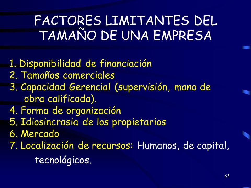 FACTORES LIMITANTES DEL TAMAÑO DE UNA EMPRESA