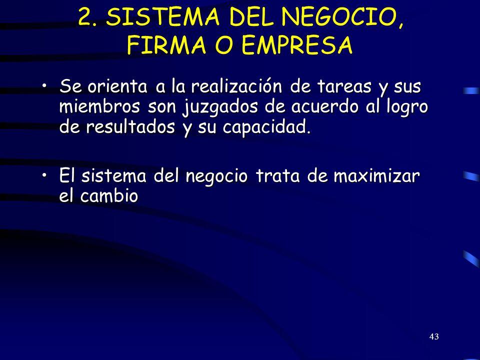 2. SISTEMA DEL NEGOCIO, FIRMA O EMPRESA