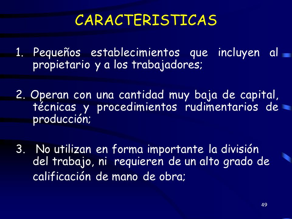 CARACTERISTICAS 1. Pequeños establecimientos que incluyen al propietario y a los trabajadores;