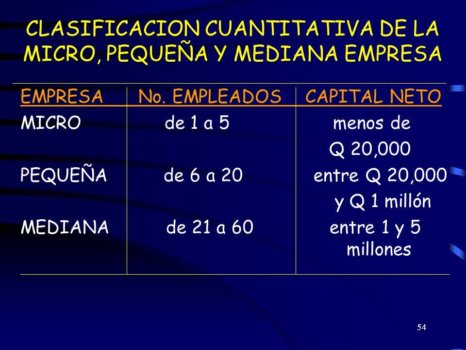 CLASIFICACION CUANTITATIVA DE LA MICRO, PEQUEÑA Y MEDIANA EMPRESA