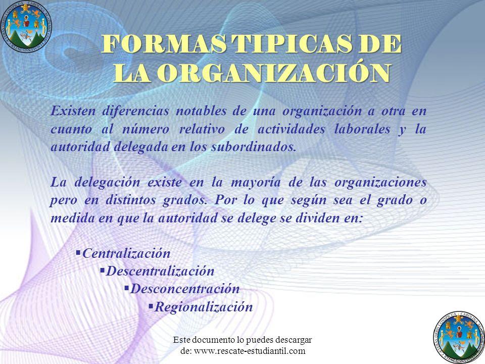 FORMAS TIPICAS DE LA ORGANIZACIÓN
