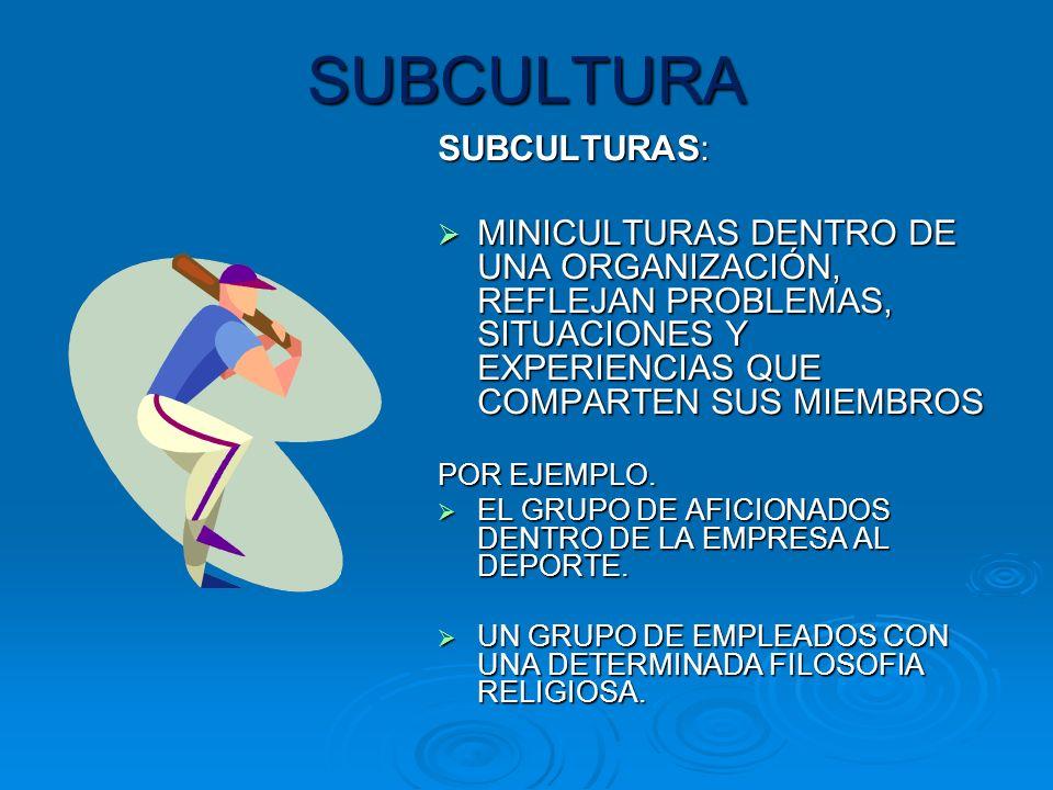 SUBCULTURA SUBCULTURAS: