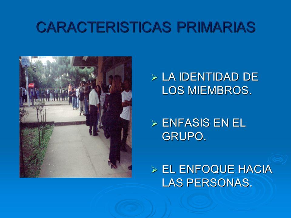 CARACTERISTICAS PRIMARIAS