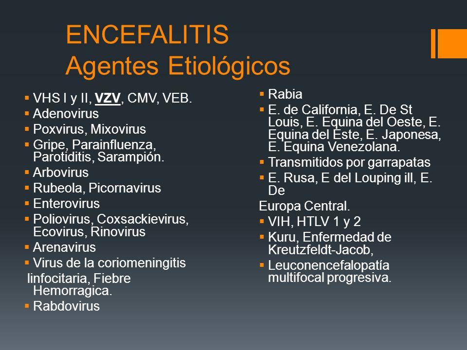 ENCEFALITIS Agentes Etiológicos