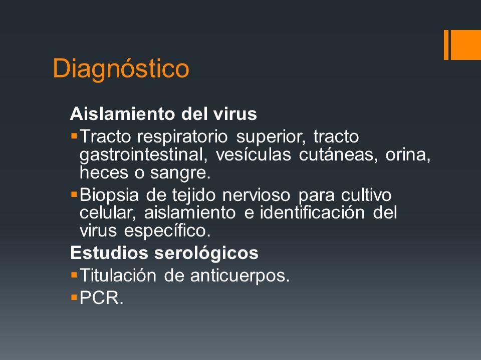 Diagnóstico Aislamiento del virus