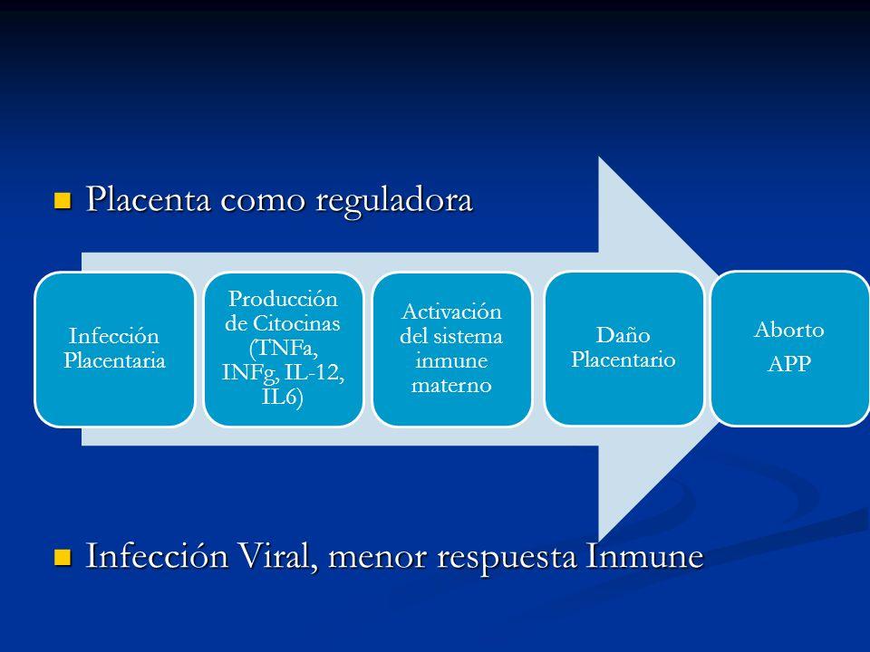 Placenta como reguladora