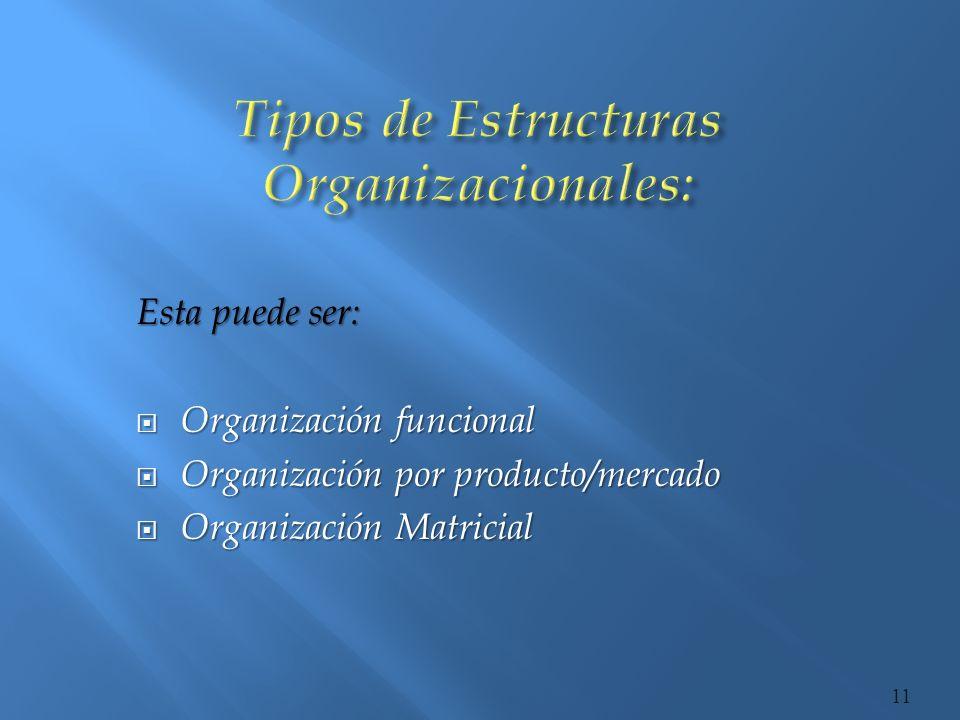 Tipos de Estructuras Organizacionales: