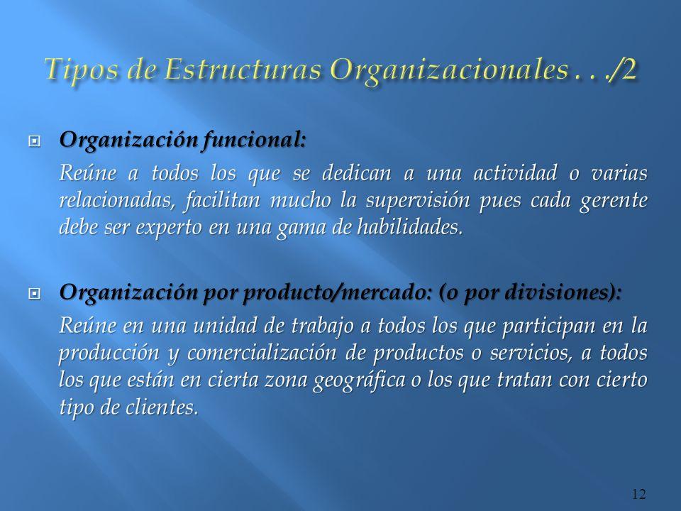 Tipos de Estructuras Organizacionales . . ./2