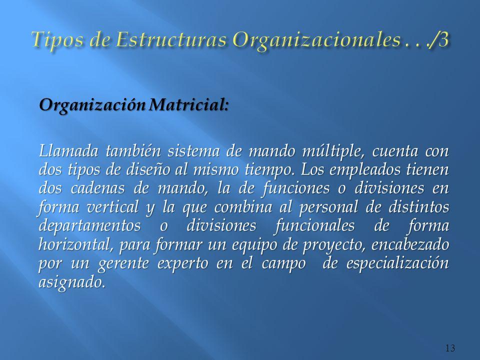 Tipos de Estructuras Organizacionales . . ./3