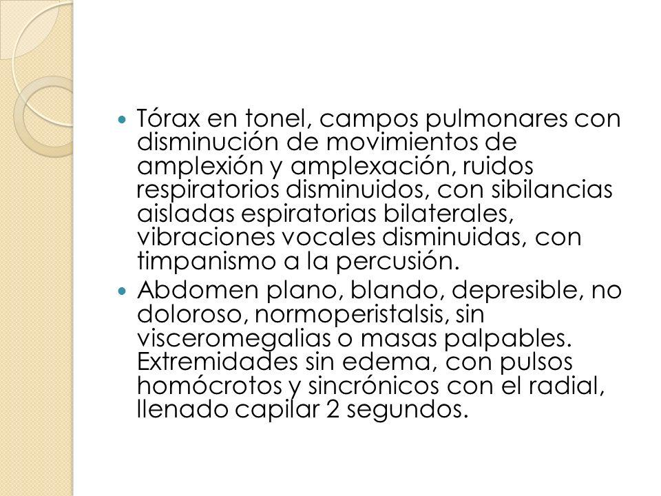 Tórax en tonel, campos pulmonares con disminución de movimientos de amplexión y amplexación, ruidos respiratorios disminuidos, con sibilancias aisladas espiratorias bilaterales, vibraciones vocales disminuidas, con timpanismo a la percusión.