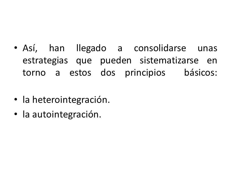Así, han llegado a consolidarse unas estrategias que pueden sistematizarse en torno a estos dos principios básicos: