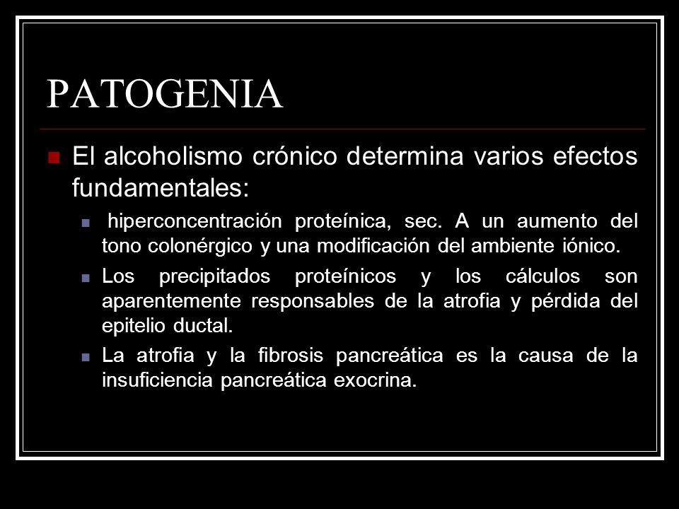 PATOGENIA El alcoholismo crónico determina varios efectos fundamentales: