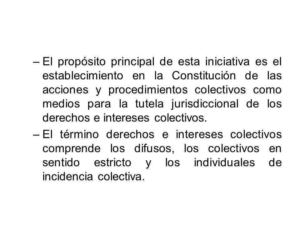El propósito principal de esta iniciativa es el establecimiento en la Constitución de las acciones y procedimientos colectivos como medios para la tutela jurisdiccional de los derechos e intereses colectivos.